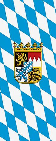 Flaggenfritze/® Gro/ße Stockflagge Schwenkflagge Einfarbig Gr/ün 60 x 90 cm