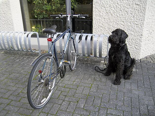 Fahrradständer TOUR, einseitig, zum Einbetonieren