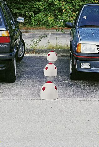 Parkplatzpilz